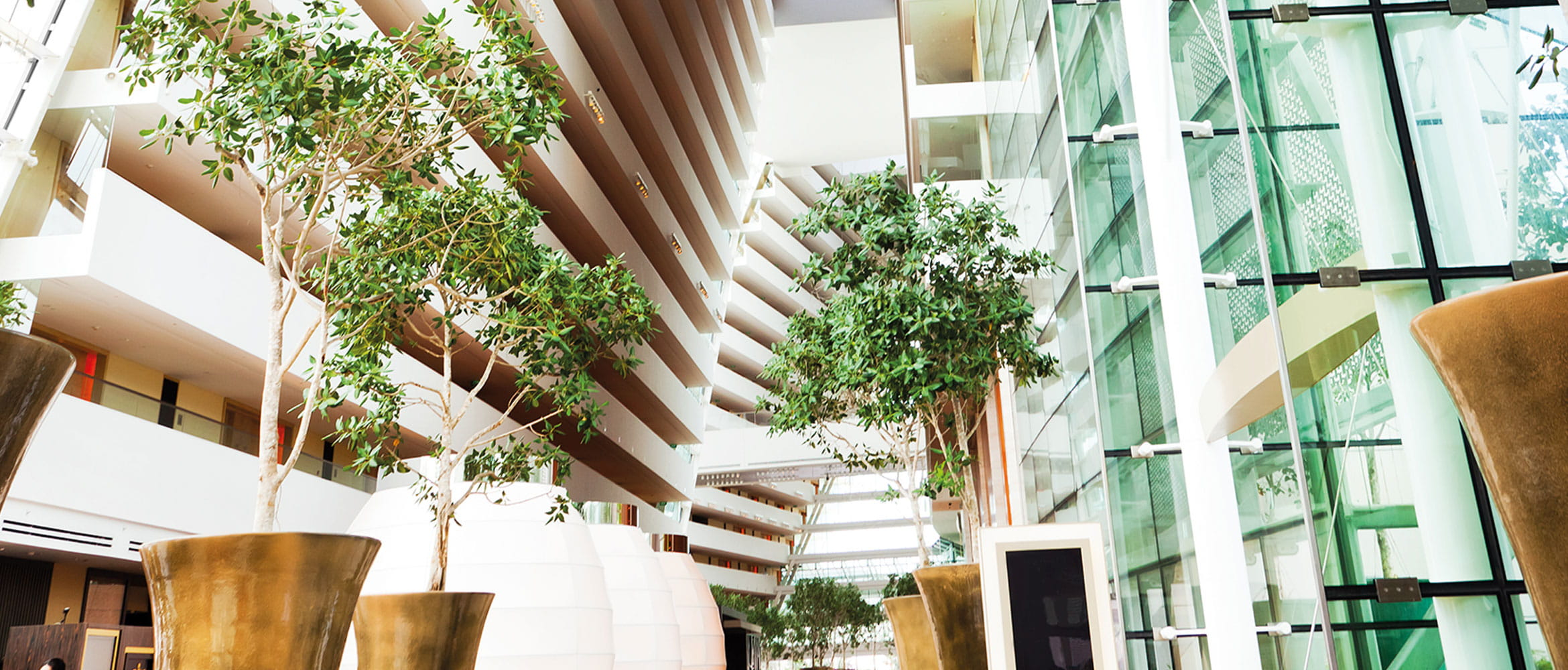 A brightly lit office complex of the future is filled with open spaces and green plants to create a more productive city workplace