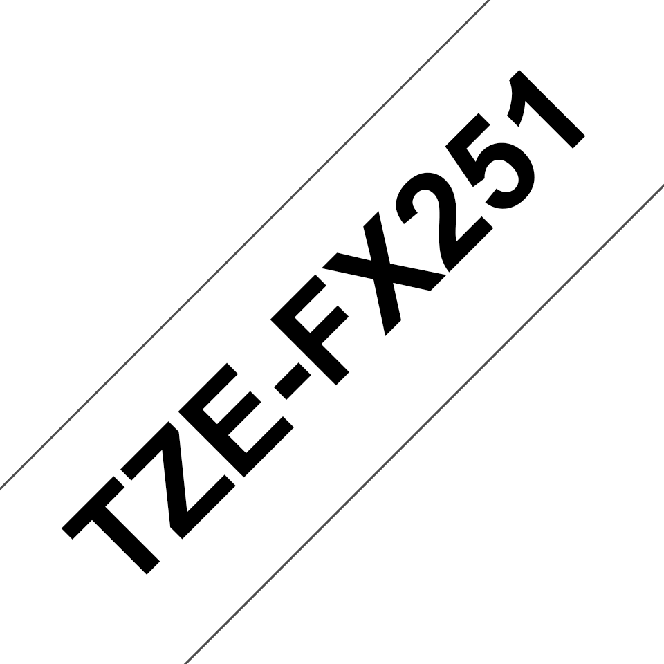 TZe-FX251 2
